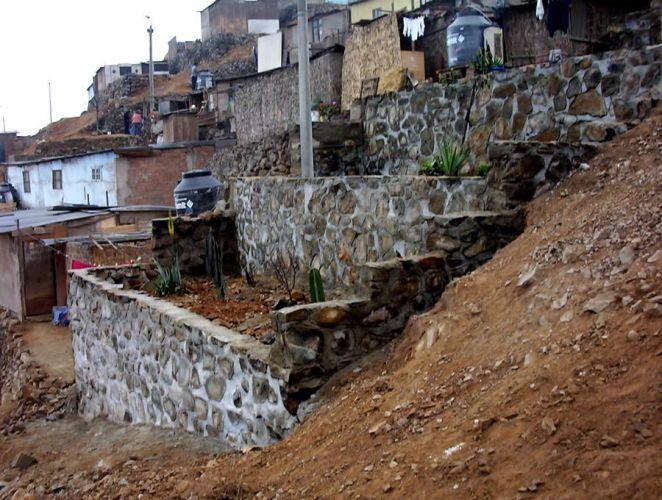 Asentamientos humanos de Carabayllo